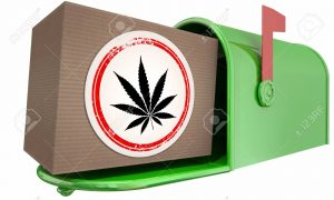 can dispensaries ship out of state