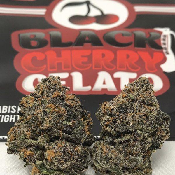 Black cherry gelato strain