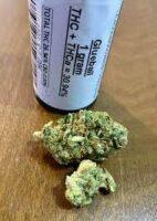 glueball strain